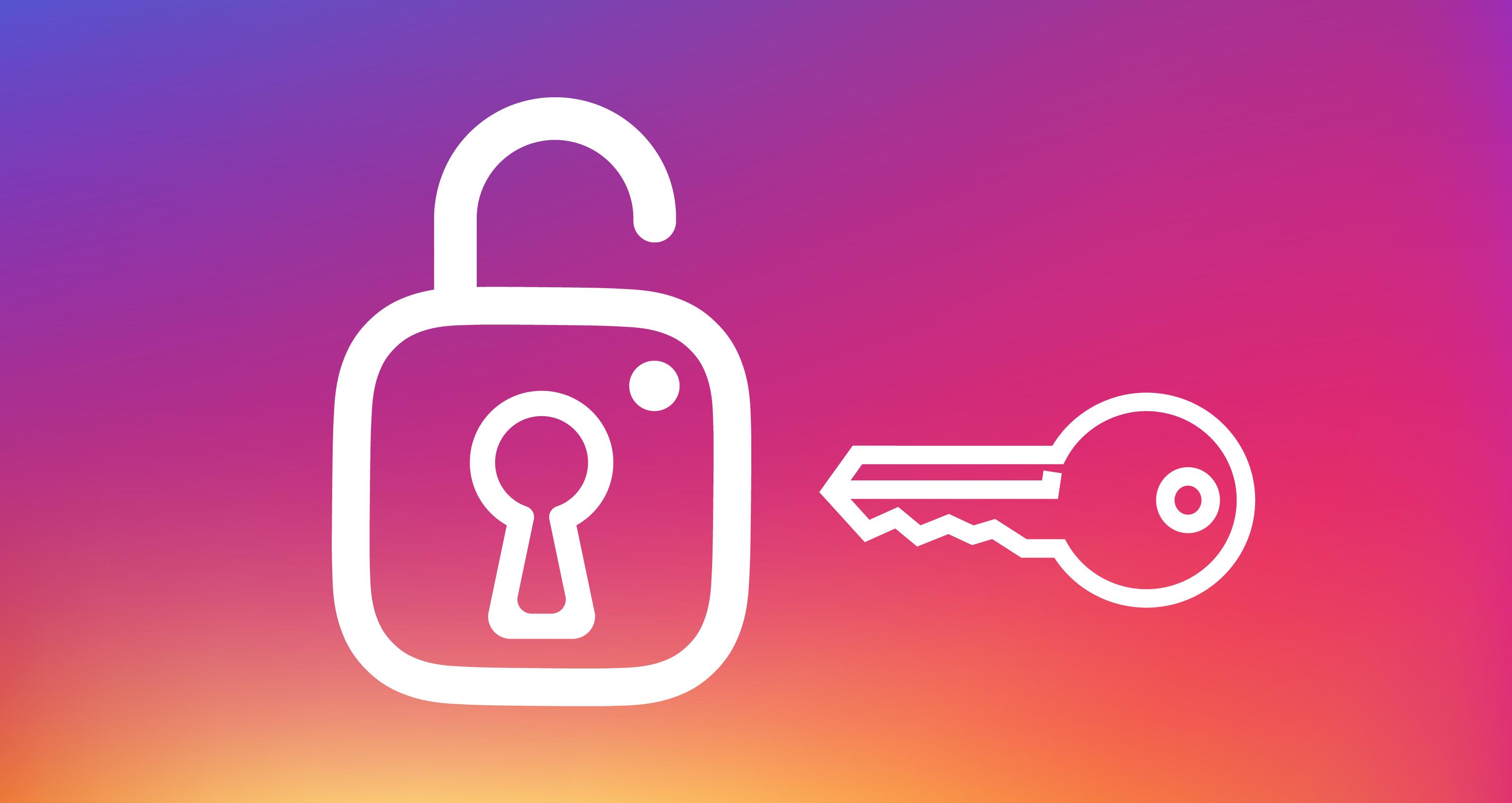 InstaEntry password hacker